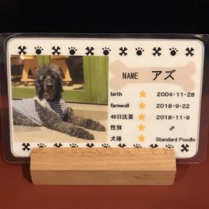 無料特典 メモリアルカード
