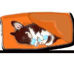 ペット安置処置方法画像説明イメージ