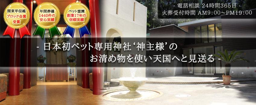 top_03_mini